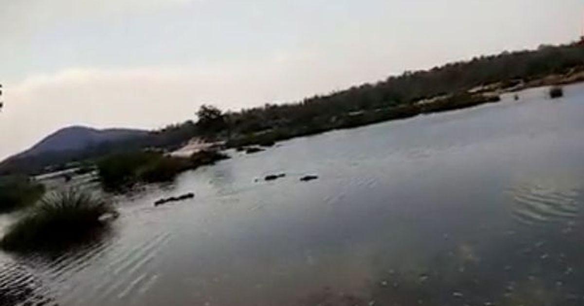 महाराष्ट्र : सुरक्षाबलों से मुठभेड़ में मारे जाने वाले नक्सलियों की संख्या 31 तक पहुंची