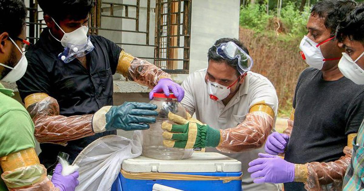 केरल : निपाह वायरस के स्रोत का पता लगाने के लिए वैज्ञानिकों का एक दल एर्नाकुलम पहुंचा