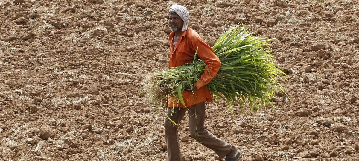 Kerala declares drought in all 14 districts of the state