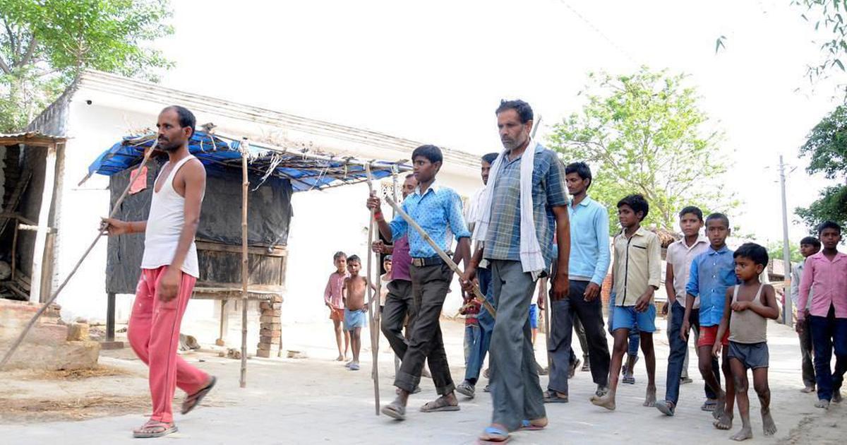 उत्तर प्रदेश के सीतापुर में कुत्तों का आतंक, चार और बच्चियों पर हमला किया, एक की मौत