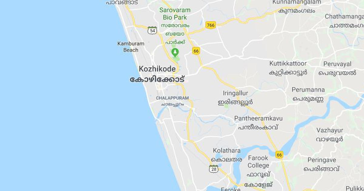 Kerala: At least three die of infection caused by Nipah virus