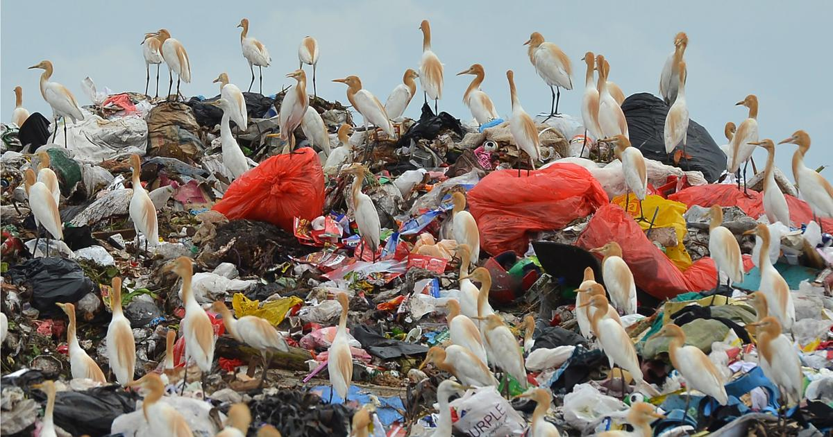 To encourage more recycling, we need to change the way we value plastic
