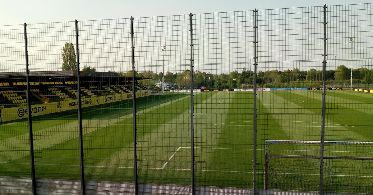 Inside the Borussia Dortmund academy: Football's ultimate heavy-metal school