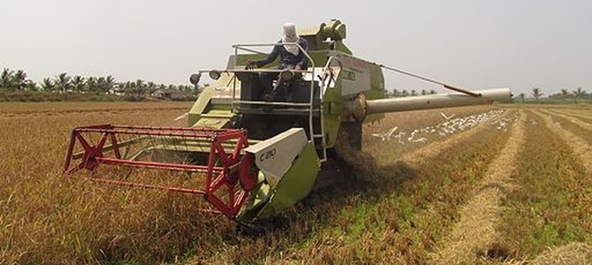 Kerala government's plan to resume farming on land given for