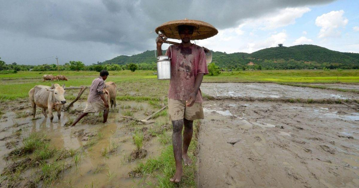 In Assam, a government-appointed panel suggests farmland be reserved for 'indigenous people'