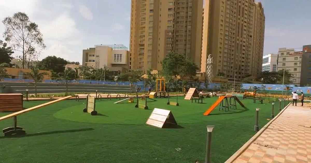 हैदराबाद में पालतू कुत्तों के लिए पार्क खुला