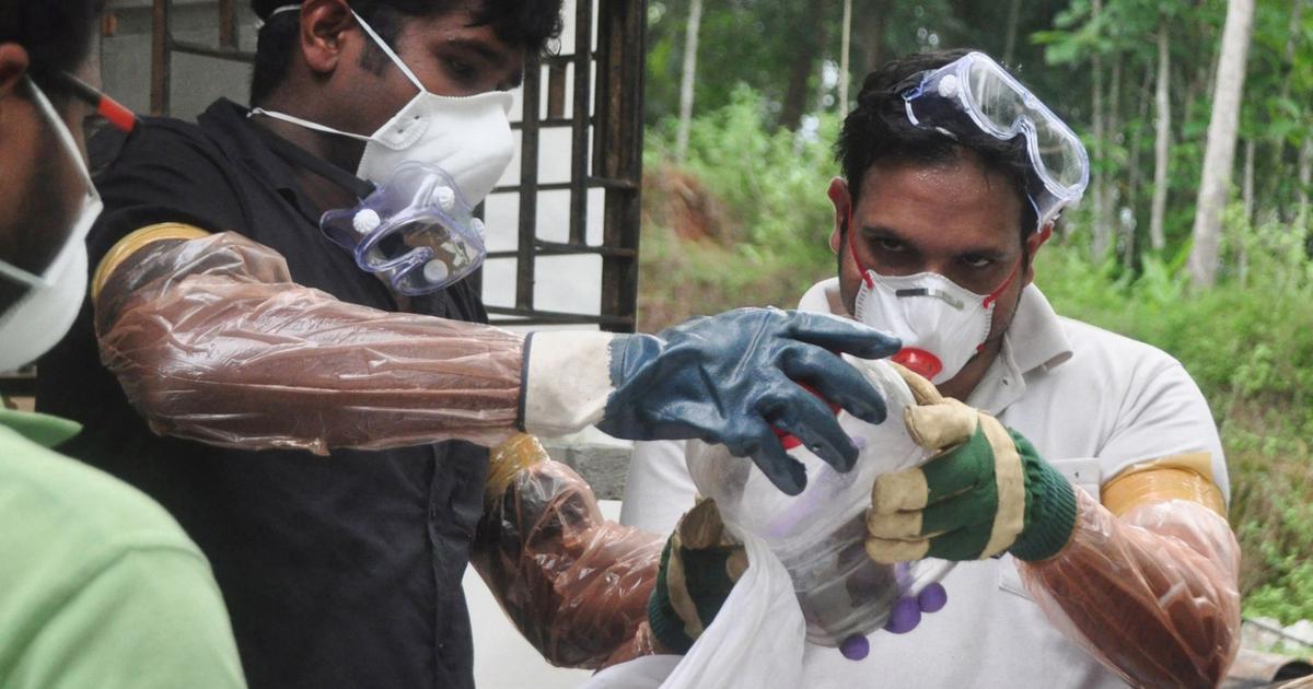 Nipah virus: Tamil Nadu steps up surveillance in nine districts sharing border with Kerala