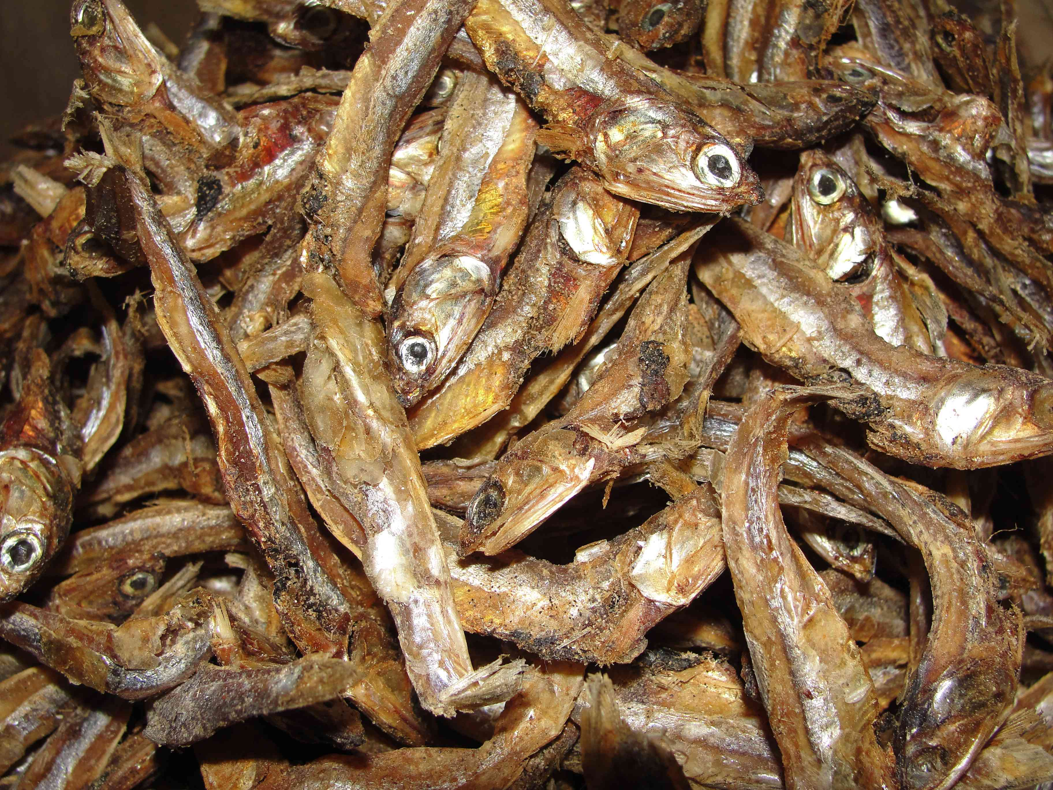 Dried fish: sparking a journey of introspection. Photo credit: Wikimedia Commons.