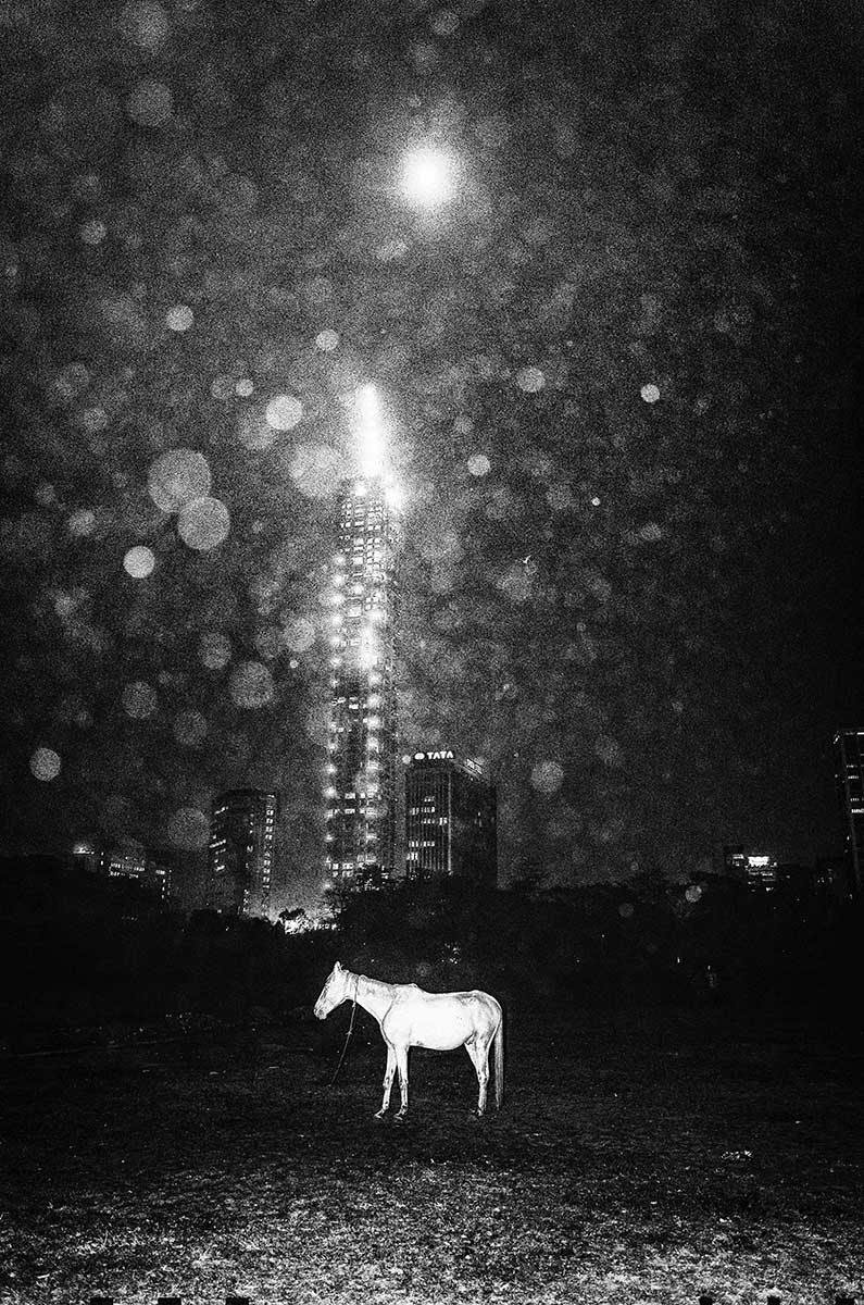 'Vague Dreams', by Kanishka Mukherji. A white horse standing in front of a tall building on a moonlit night. © Kanishka Mukherji, India, Shortlist, Open, Enhanced (Open competition), 2018 Sony World Photography Awards