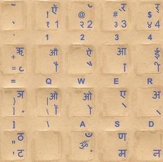 क्या हिंदी का यह हाल उसके समाज की कायरता और अपात्रता की वजह से है?