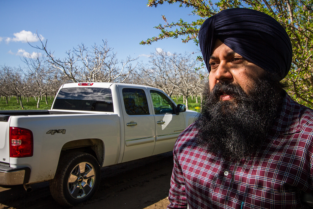 Yuba City, California: Karm Bains is a fourth-generation California farmer, who grows peaches, prunes, walnuts, and almonds. His father, Didar Singh Bains, worked on California farms as a day labourer, saving his meagre wages and buying land to become one of the wealthiest peach growers in the nation.