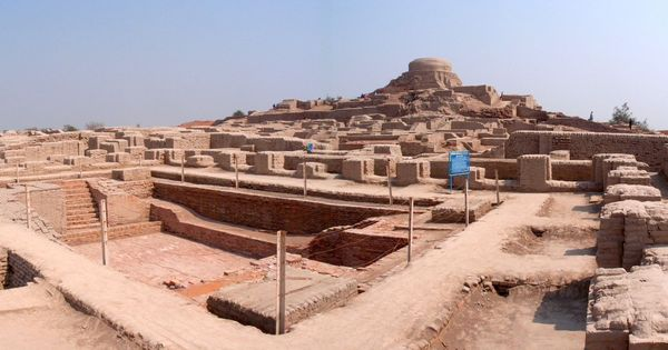 Indus Valley civilisation had meat-heavy diets, preference for beef, reveals study