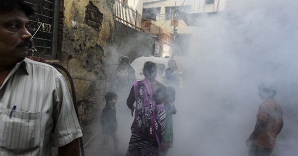 Here's what you need to know about Zika in India