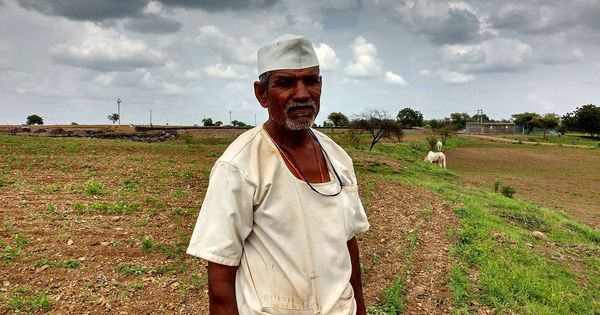 Credit crunch: Bank lending to Maharashtra's farmers has dipped (and loan waivers are the reason)