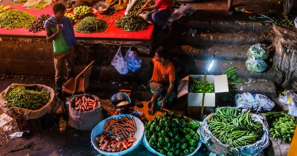 Nearly half of India's food produce has to be scrapped before it reaches your plate
