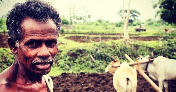 किसानों को सिर्फ चार फीसदी के ब्याज पर कर्ज देने के मोदी सरकार के ऐलान सहित आज के ऑडियो समाचार