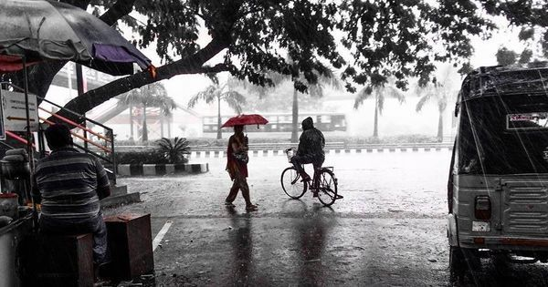 Expect monsoon distribution to be very good this year, says IMD