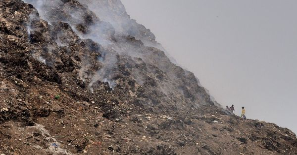 East Delhi municipal body moves National Green Tribunal asking for new plots to dispose of garbage