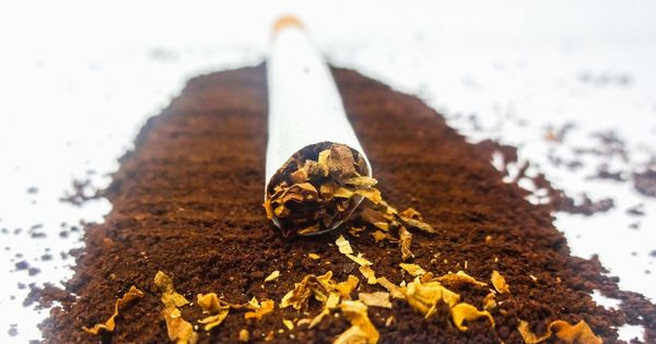 Home ministry blocks foreign funds for NGO that supported health ministry's anti-tobacco drive