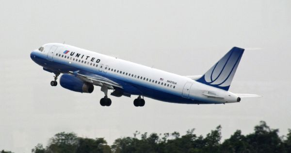 United Airlines apologises after family claims their dog died in the flight's cargo hold