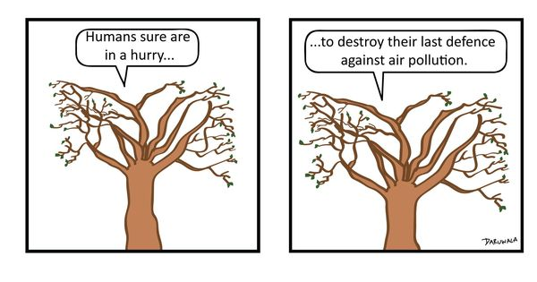 The endangered trees of Mumbai's Aarey Colony are speaking up against deforestation