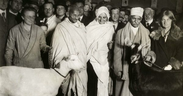गांधी की आलोचना में दिक्कत नहीं है, बिना सोची-समझी निंदा में है