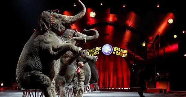 'The Greatest Show on Earth' is over: Watch as the circus act ends after a grand run of 146 years