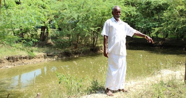 Farmers in coastal Tamil Nadu are battling drought by varying crops and techniques