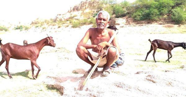 राजस्थान की मुख्यमंत्री के गृह जिले का एक गांव जहां लोगों को लाशें हटाकर पानी पीना पड़ता है!