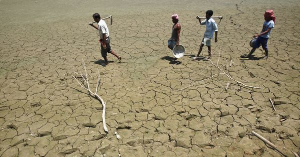Far from being a solution, farm loan waivers pose serious moral, political and economic problems