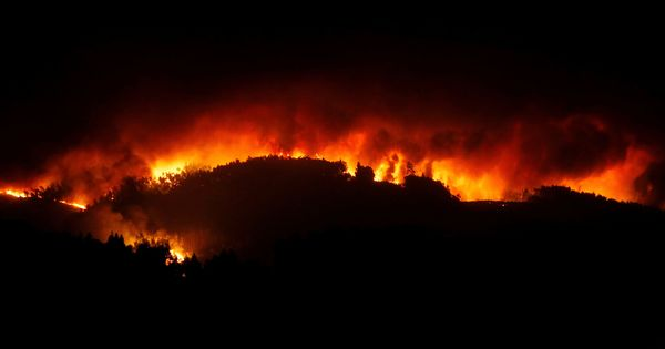 Portugal forest fires claim at least 57 lives, injure several others