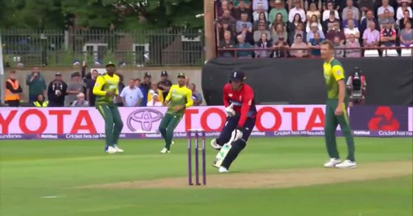 'It's part of the rules': South Africa's Chris Morris has no qualms over bizarre Jason Roy dismissal