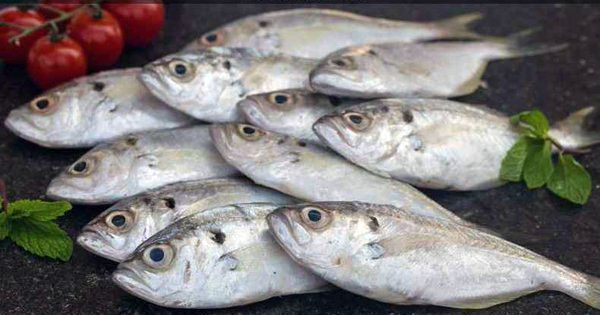 A start-up is changing the way fish has been sold and bought in India for centuries