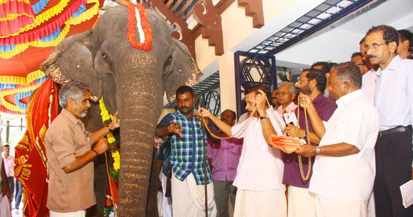 For the record: Should the world's oldest captive elephant in Kerala be retired?