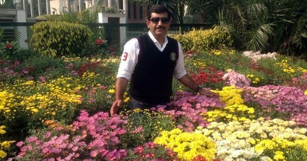 Why a Faridabad businessman joined a global army of guerrilla gardeners – and you should too