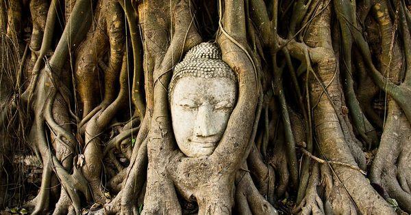 रोहिंग्या संकट : बुद्ध के जीवन की इस घटना में म्यांमार के बौद्धों के लिए कई सबक़ हैं