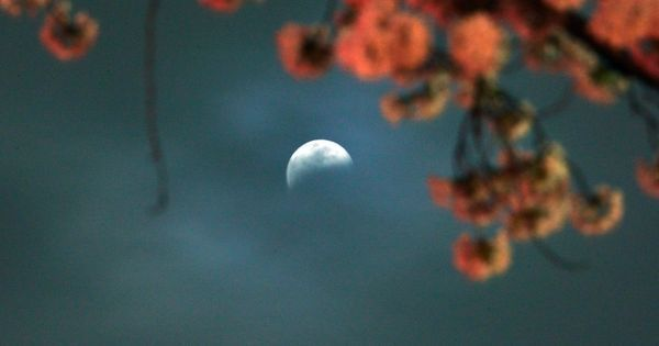 India will witness a partial lunar eclipse tonight