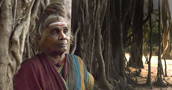 Video: This woman looked after a banyan tree for 45 years and turned it into a magnificent ecosystem