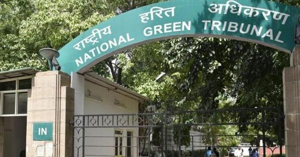 NGT questions UP Pollution Control Board about contaminated drinking water in Sambhal district