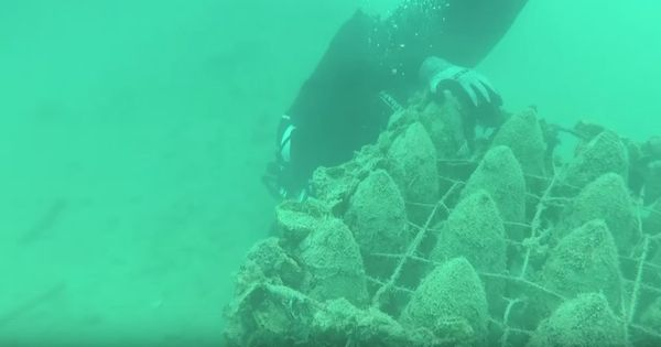 Watch: Twenty metres under the sea, this underwater winery in Croatia is making waves