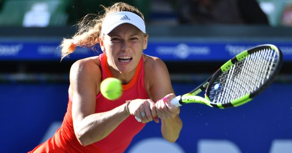 Eastbourne: Wozniacki primes for Wimbledon with tough win, Mischa Zverev lifts first ATP title