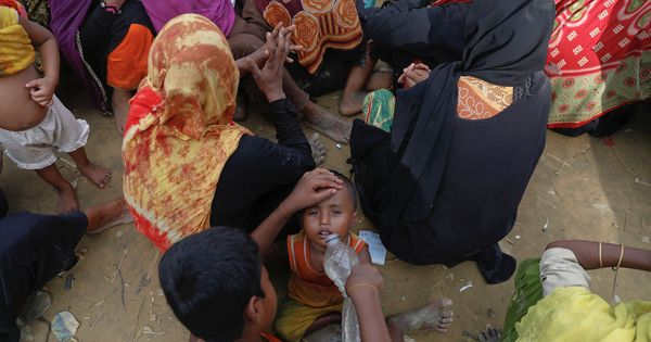 BSF says it has launched a campaign against 'criminal gangs' that help Rohingyas enter India