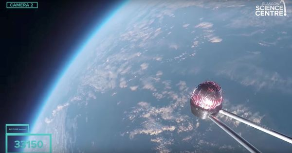 Watch: Why did Scotland try to send a teacake named Terry into space?