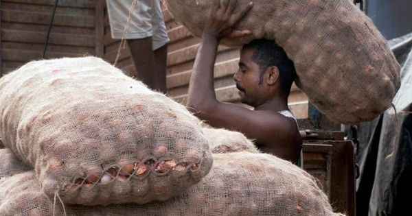 How to support farmers without buying their crops – Madhya Pradesh launches bold new experiment