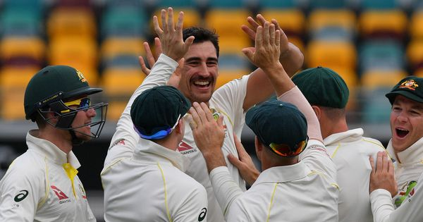 Watch: Is this Ashes scorcher from Mitchell Starc, the ball of the year?