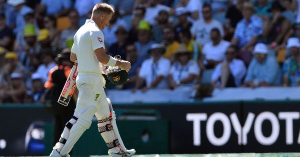 Ashes, 1st Test, Tea: Quick wickets hamper Australia's momentum