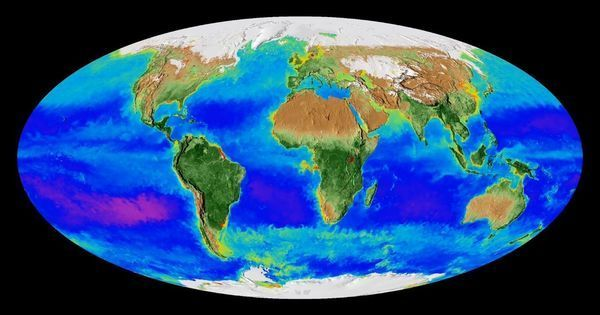 This video made with NASA satellite footage shows the Earth 'breathing' for the past 20 years