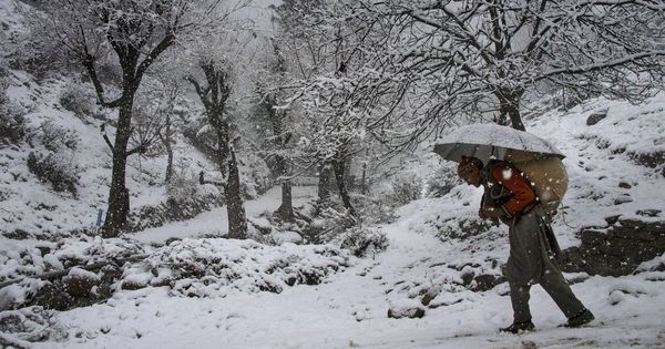 In photos: Fresh snowfall breaks month-long dry spell in higher reaches of Jammu and Kashmir