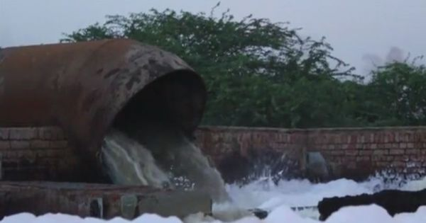 Watch: This is how tanneries are adding to the pollution in the Ganges
