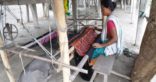 How twining technology with traditional skill has changed the lives of Assam's Mising tribals